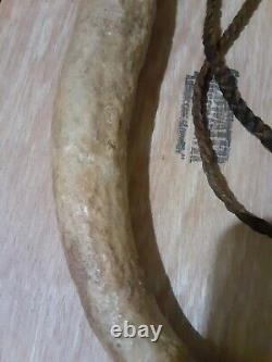 19th C Native American Indian Elk Horn Riding Crop Whip Quirt Very Early