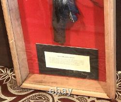 Vintage Antique Early Native Americans Metal Head Tomahawk Weapon Shadowbox Case